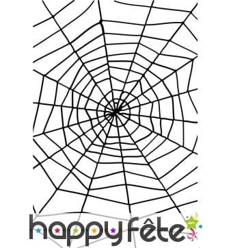 Grande toile d'araignée