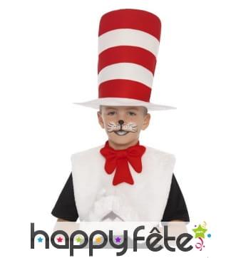 Kit du chat chapeauté pour enfant