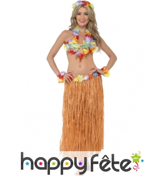 Kit danseuse hawaienne