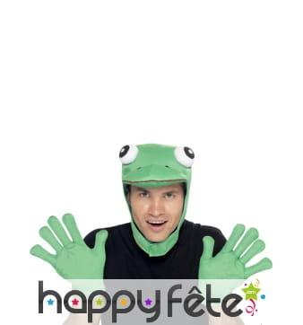 Kit grenouille
