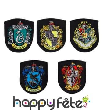 Les 5 écussons de Poudlard, Harry Potter