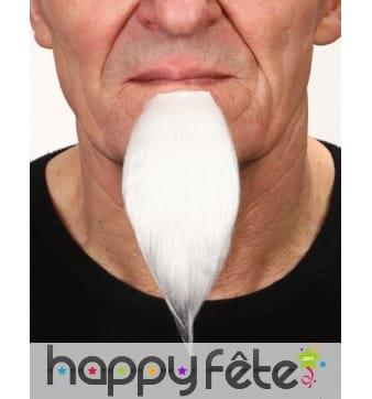Longue barbichette blanche