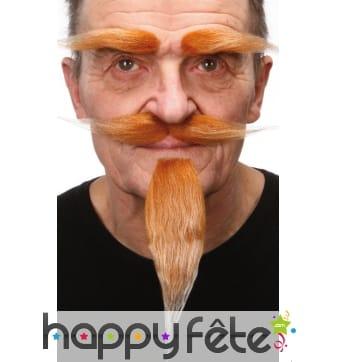 Long bouc, moustache et sourcils roux