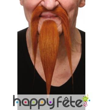 Longue barbe rousse et moustaches de chinois