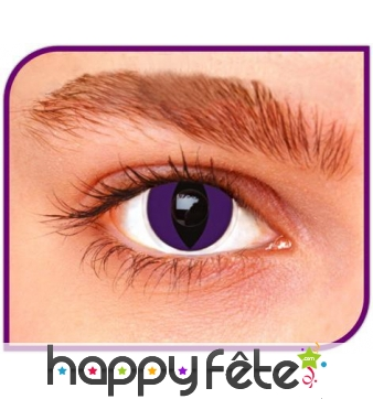 Lentilles chat contour violet