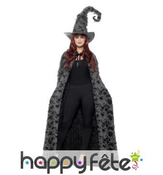 Longue cape grise de sorcier ou sorcière