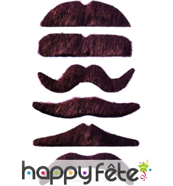 Lot de 12 moustaches chatain fonce auto-adhésives