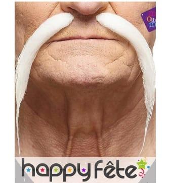 Longues et fines moustaches blanches chinoises