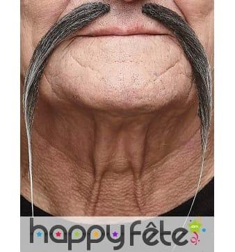 Longues et fines moustaches grise chinoises