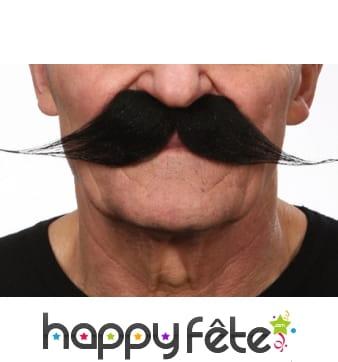 Longues moustaches noires