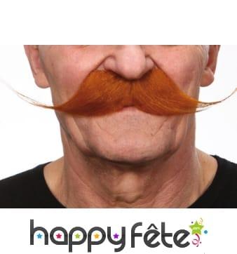 Longues moustaches rousses