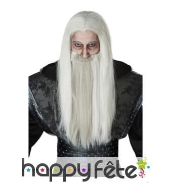 Longue perruque grise de sorcier