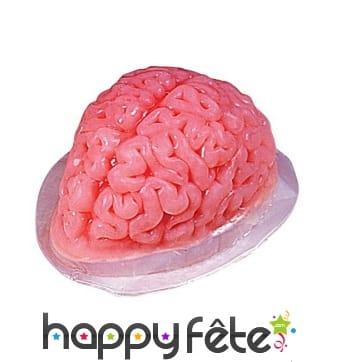 Moule à gelée en forme de cerveau transparent