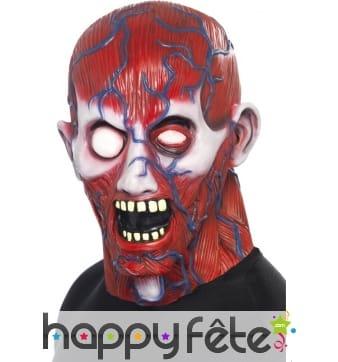 Masque anatomie horreur