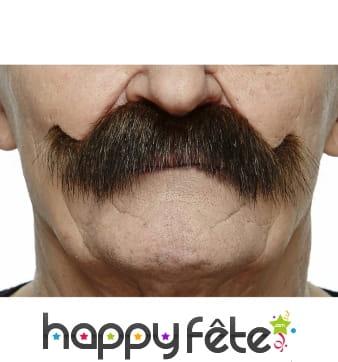 Moustaches brunes de cowboy