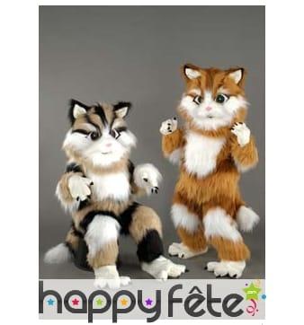 Mascotte chat rayé