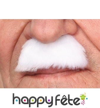 Moustaches dupond blanche
