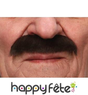 Moustaches de major d'homme