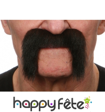 Moustaches de motard brunes