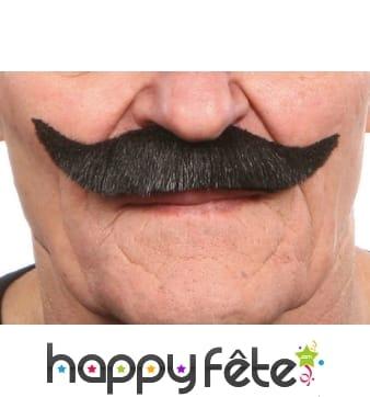 Moustaches des mousquetaire