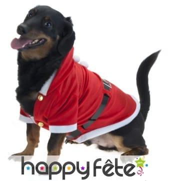 Manteau de père Noël pour chien