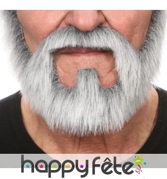 Moustache et barbe grise tout en un