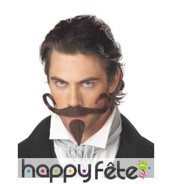 Moustache et barbichette de mousquetaire
