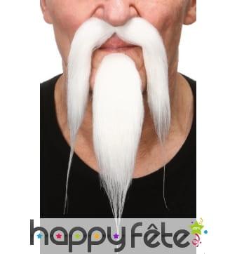 Moustache et bouc blanc de chinois