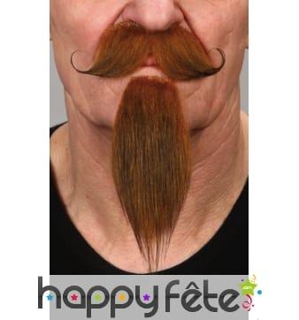 Moustaches et barbichette rousse de mousquetaire