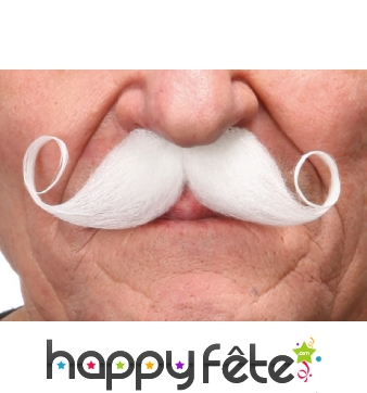 Moustaches Francaise blanches