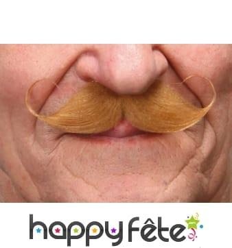 Moustaches Francaise blondes