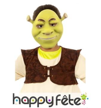 Masque facial de Shrek pour enfant