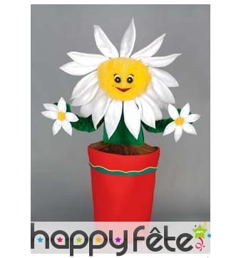 Mascotte fleur marguerite