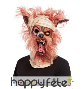 Masque intégral de loup garou zombie pour adulte