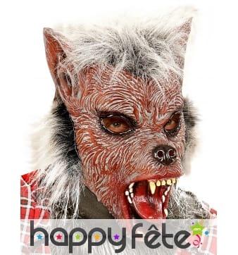 Masque intégral de petit loup garou poilu