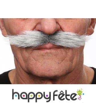 Moustaches italiennes grises