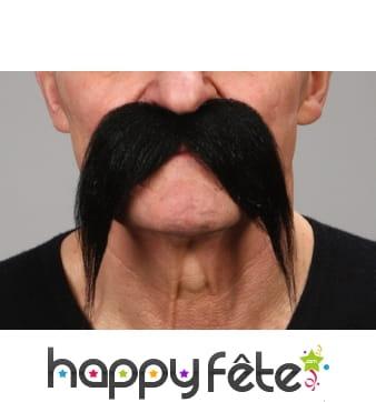 Moustaches noires tombantes