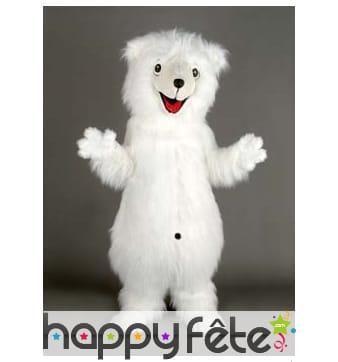 Mascotte ours blanc gentil