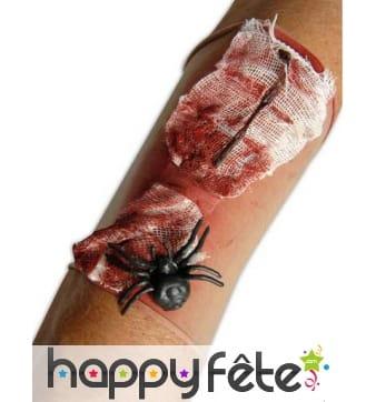 Manchon plaie en sang avec araignée