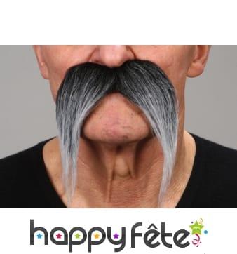 Moustaches poivre et sel tombantes