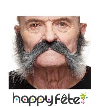 Moustache pattes grisonnante adhésive
