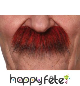 Moustaches rousses épaisses