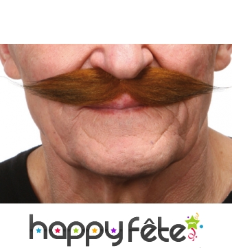Moustaches rousses style 19eme