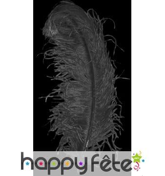Plume autruche noire extra 50 cm