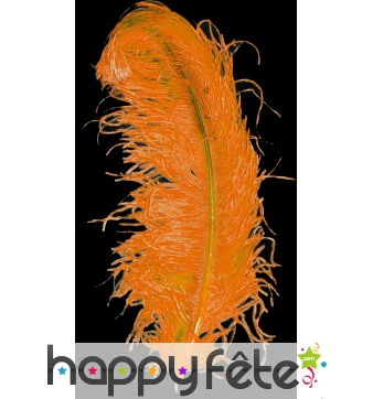 Plume autruche orange extra 50 cm