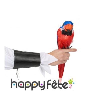 Perroquet d'épaule décoratif