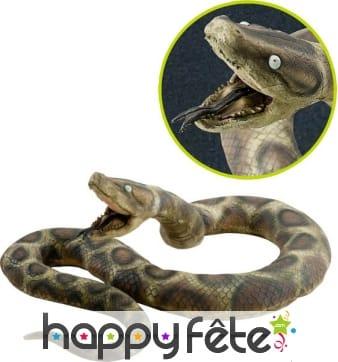 Python en plastique