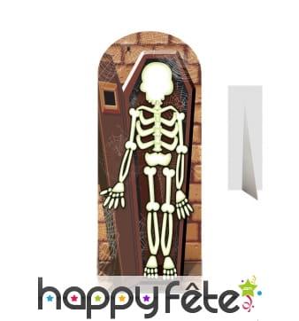 Passe-tête squelette dans un cercueil