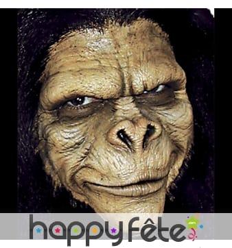 Prothèse visage chimpanzé en mousse