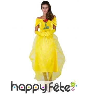 Robe longue de Belle princesse avec voile